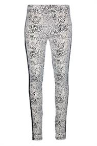 In shape Broek INS190139